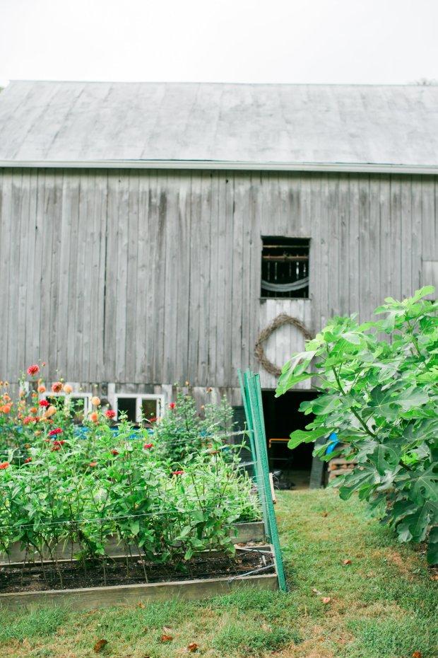 Friday Favorites Scarborough Farm
